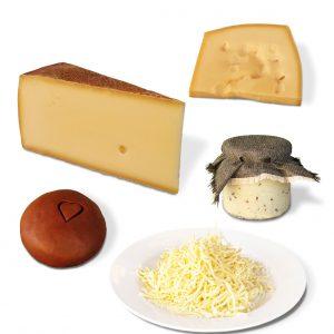 Käse der Bregenzerwälder Käsestrasse