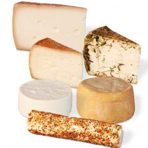 Käse aus Ziegen-Heumilch